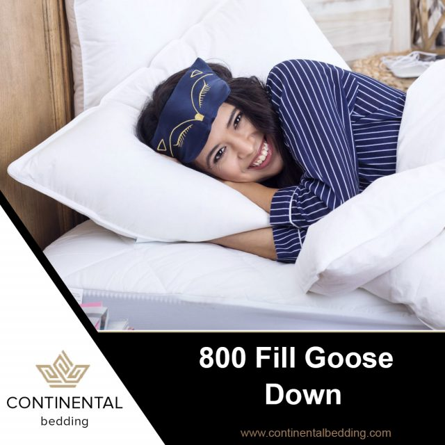 800 fill goose-down